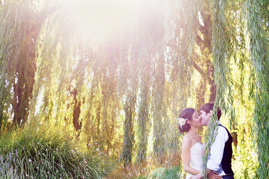 Bride and Groom kissing underneath a willow tree at outdoor wedding