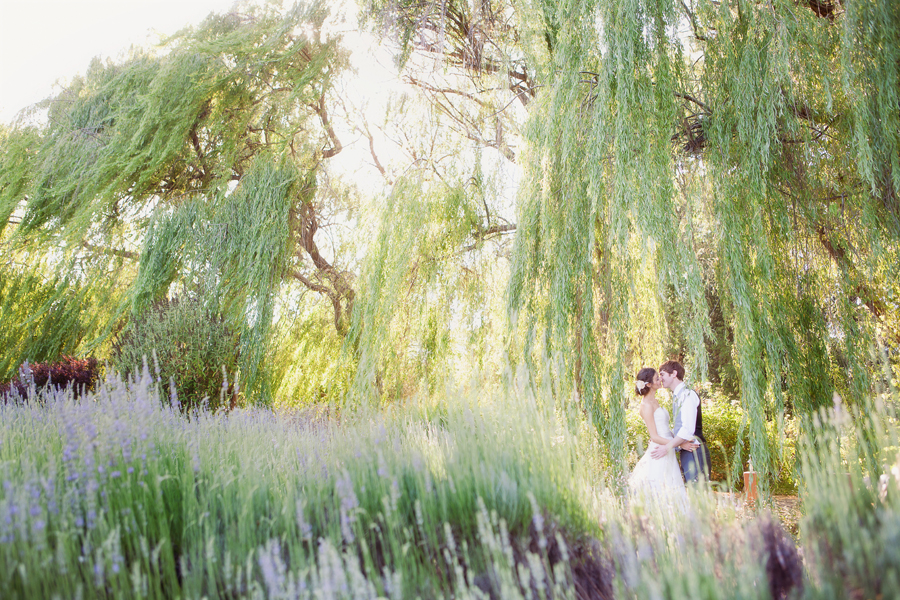 Bride and groom under willow tree at outdoor wedding