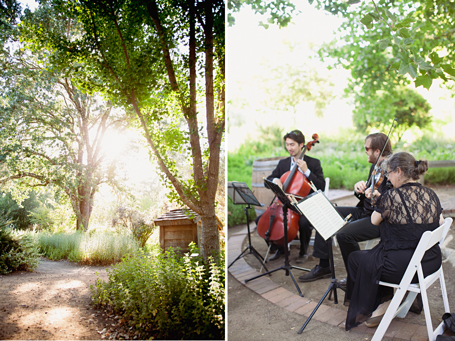 quartet playing at outdoor wedding