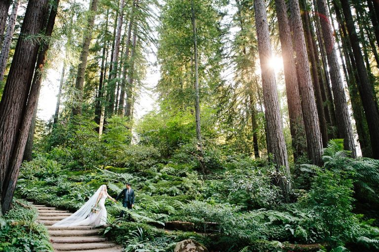 Nestldown Wedding Photography. Outdoor Redwood Wedding Photography