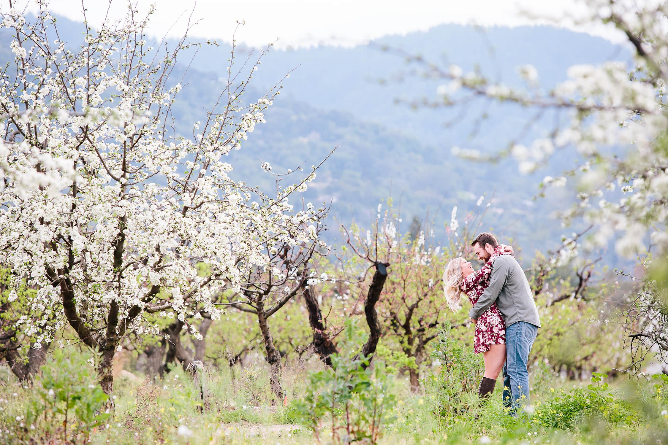 Couple standing in a blooming orchard in Santa Cruz Ca.