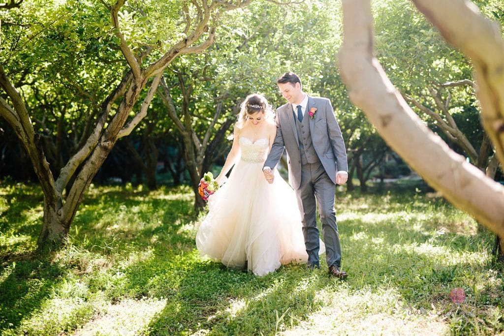 Bride and Groom in orchard at Nestldown Wedding