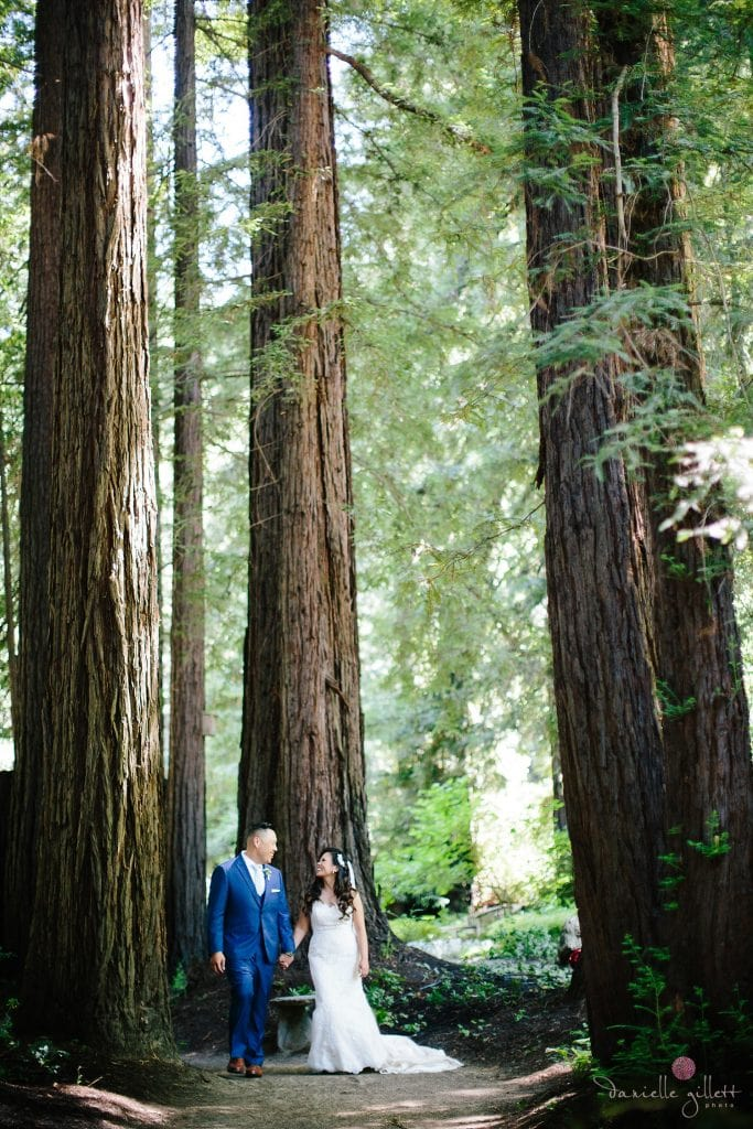 Nestldown Wedding, Bride and groom in redwoods atNestldown
