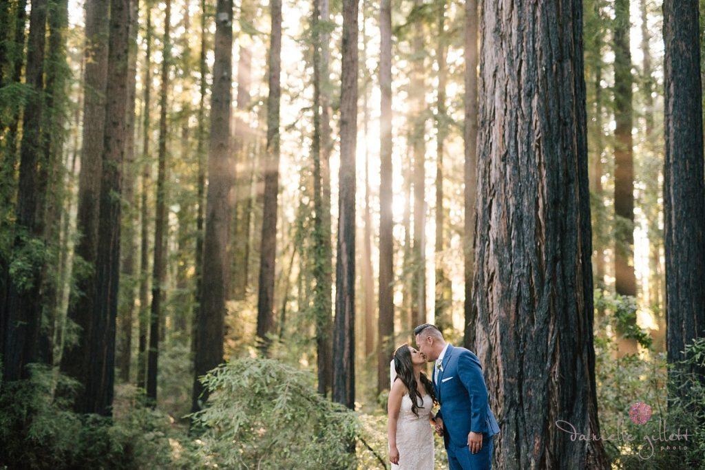 Nestldown Wedding, Bride and groom in redwoods at Nestldown