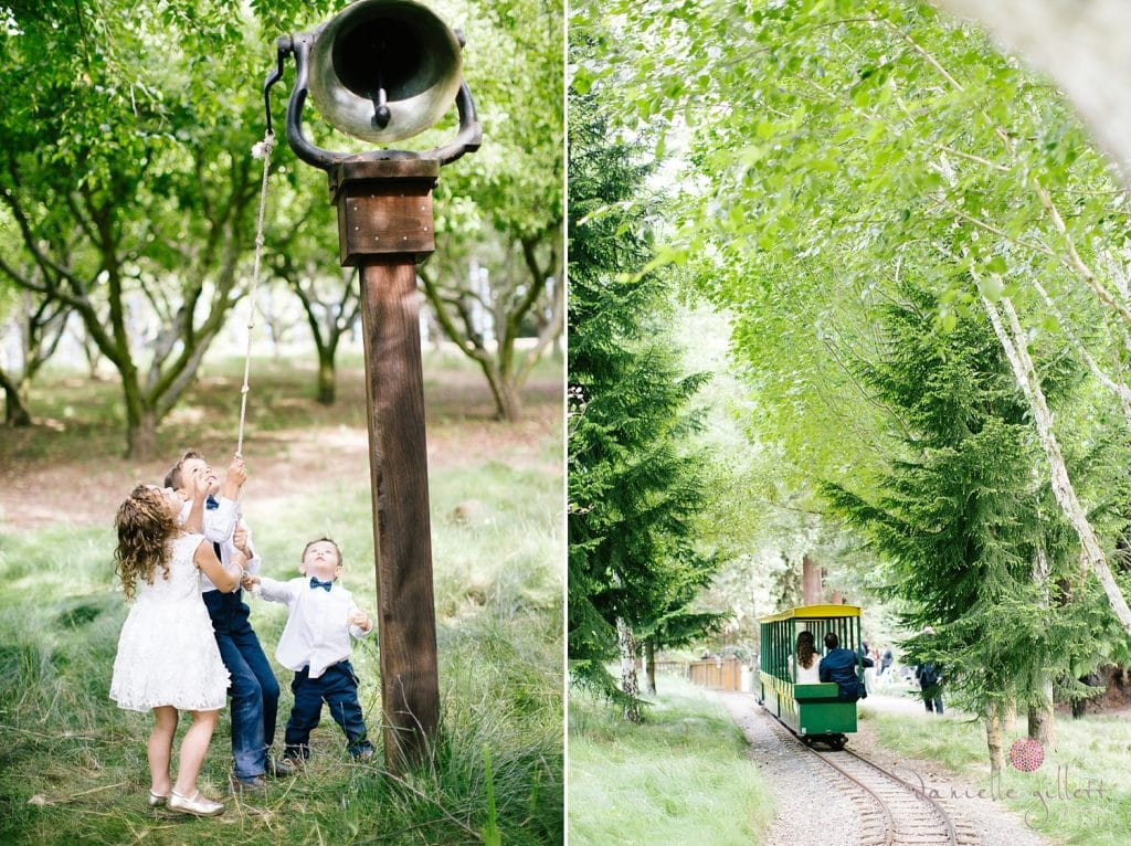 Nestldown Wedding, bride and groom on train at Nestldown