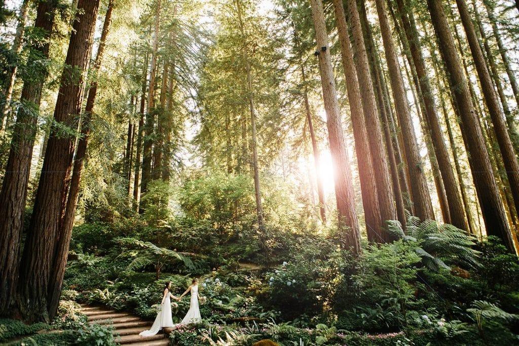 Redwood wedding portraits. Same sex marriage brides at Nestldown Wedding