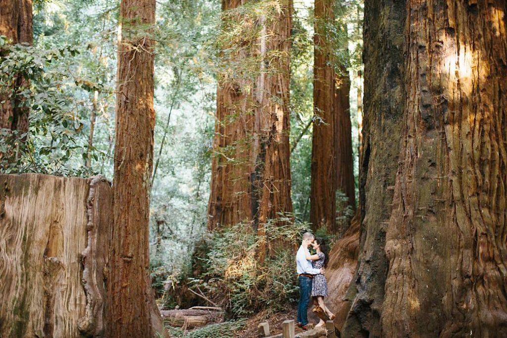 Redwood Engagement Photos. Engagement Photography in Santa Cruz Redwoods.