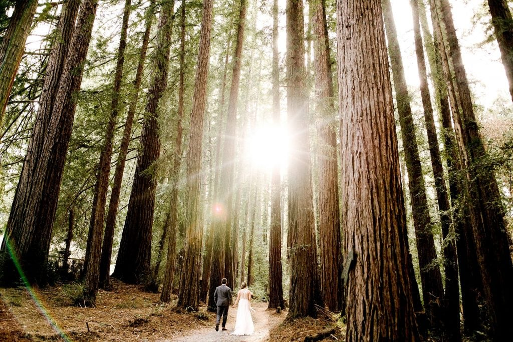 Nestlodwn Wedding photo. Bride and Groom Wedding Photo. Nestldown Wedding photographer. Redwood Wedding Photo